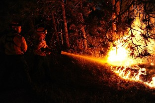 """CSIF reclama a la Junta la """"urgencia"""" de un servicio anti incendios suficiente durante todo el año"""