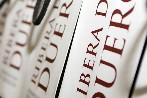 El PP apoyará la candidatura de  Aranda de Duero a 'Ciudad Europea del Vino 2017'