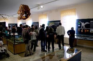 El Grupo Socialista pide a Rico que urja a la Junta a incluir en los PGC 2017 el nuevo Museo de Dinosaurios de Salas