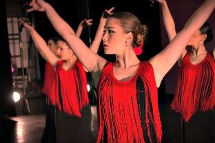 Dos galas, en Burgos y Valladolid, conmemoran el Día Internacional de la Danza