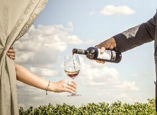 'Pasaporte a la Ribera del Duero', 20 atractivas opciones para vivir y sentir la cultura del vino