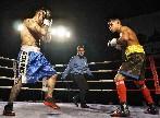 Miranda de Ebro acogerá boxeo profesional el próximo 8 de septiembre