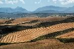 La Tierra de Campos vallisoletana