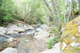 Descubre las maravillas de la Sierra de Francia