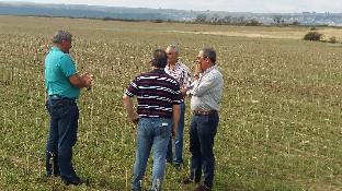 El delegado territorial de la Junta visita la zona del Valle de Valdelucio afectada por la granizada