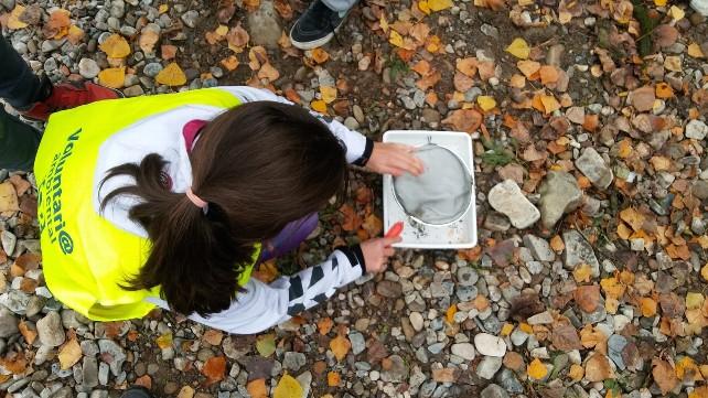 conservacion-rios-naturaleza-alumno