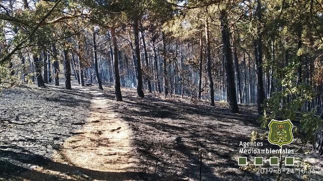 incendio-cortes-agentes-medioambientales