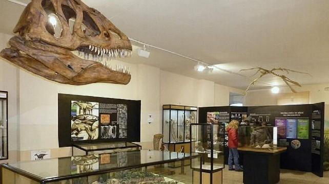 dinosaurios-salas-museo
