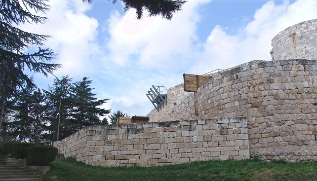 castillo-burgos
