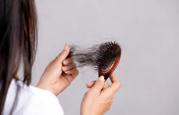 Cortar Recitar pollo  Cómo frenar la caída del cabello con remedios caseros - Burgos Noticias | -  Diario Digital de Burgos - Información, Noticias y Actualidad