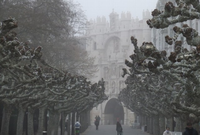 niebla-burgos
