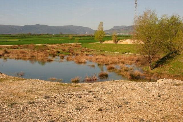 laguna Suzana
