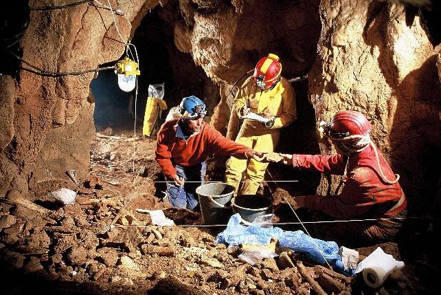 excavacion huesos historia