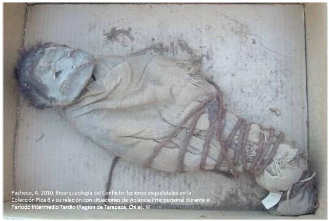 investigacion momia