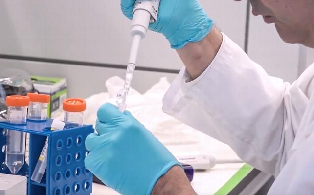 covid-19-experimentos-investigacion-coronavirus