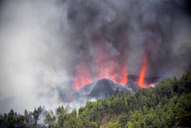 palma volcan